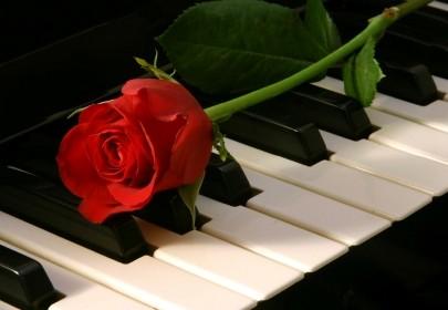 Kviečiame į pianisto Vido Vaitkevičiaus nemokamą koncertą