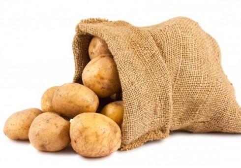 Koks tu emigrantas - bulvė ar koks kitoks augalas? [nuomonė]