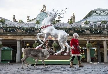 Londono Covent Gardenas kviečia į svečius pas Kalėdų Senelio elnius