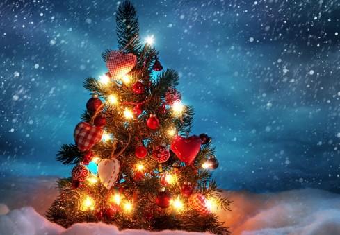 Dalyvauk gražiausios kalėdinės eglutės konkurse ir laimėk puikius prizus!