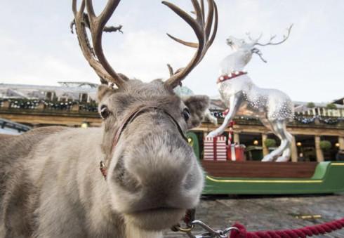 Aplankykite dar neatrastą kalėdinį Londono kampelį!