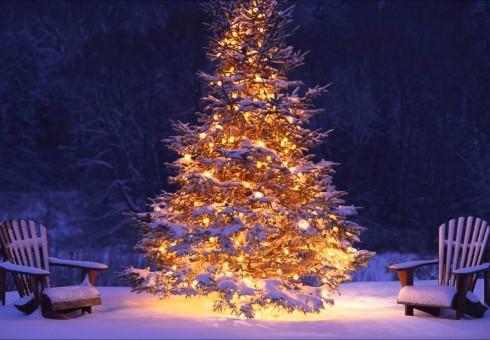 Džiaugsmingų šv. Kalėdų! [skaitytojos eilėraštis]