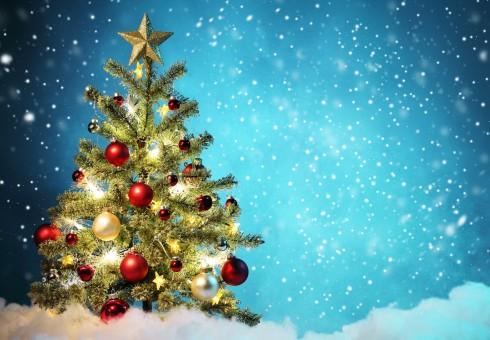 Išrinktos gražiausios 2015 metų kalėdinės eglutės [laimėtojams – prizai!]