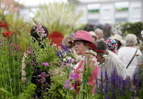 Aplankykite didžiausią pasaulyje kasmetinę gėlių parodą