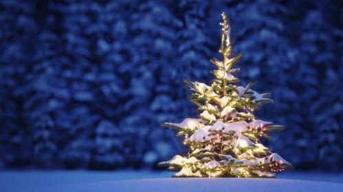 Kalėdinis konkursas: papuošk gražiausią eglutę ir laimėk puikius prizus!