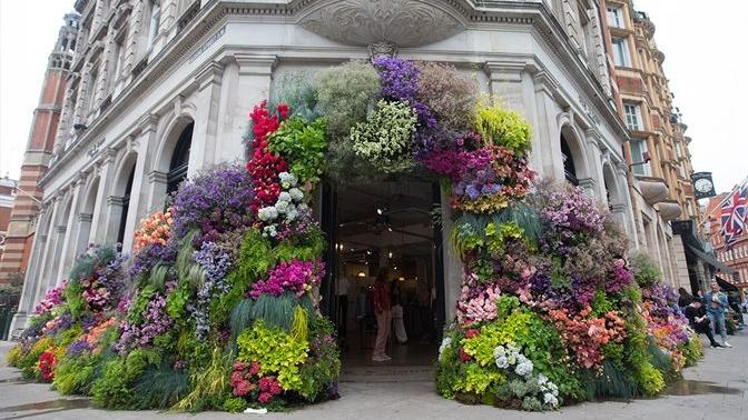 "Nemokamas ""Chelsea in Bloom"" floristikos festivalis Londone"