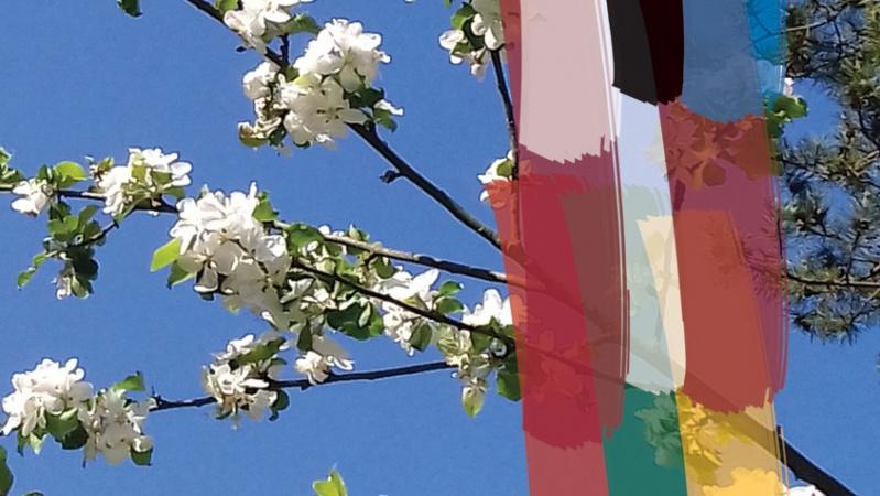 JK gyvenantys lietuviai ir kt. Baltijos šalių atstovai kviečiami pagerbti tremties aukas