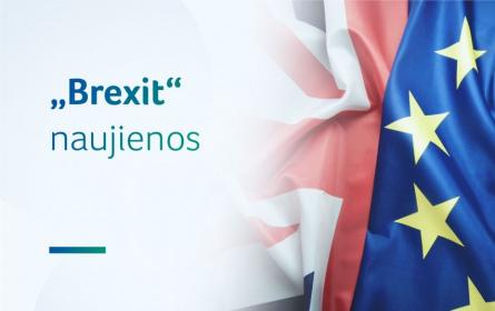6 Lietuvos vyriausybės žingsniai, jei britai pasitrauktų iš Europos Sąjungos be sutarties