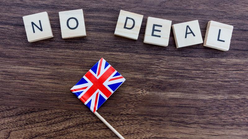 JK parlamentas balsuos dėl šalies išstojimo iš ES be jokio susitarimo