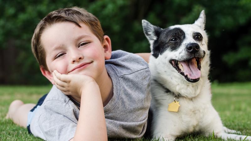 """JK pasipiktinimą sukėlė laida apie """"šunišką"""" vaikų auklėjimą"""