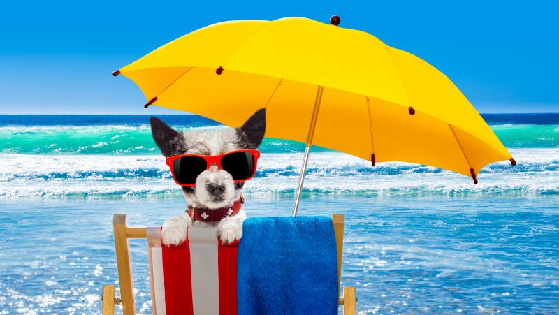 Ilgąjį savaitgalį JK laukiama karščio bangos