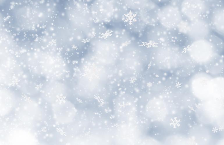 Nuo Arkties link JK keliauja šaltukas, kai kur temperatūra kris ženkliai