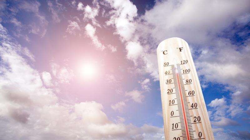 """Per karščio bangas 2019 m. vasarą Anglijoje mirė """"beveik 900 žmonių"""""""