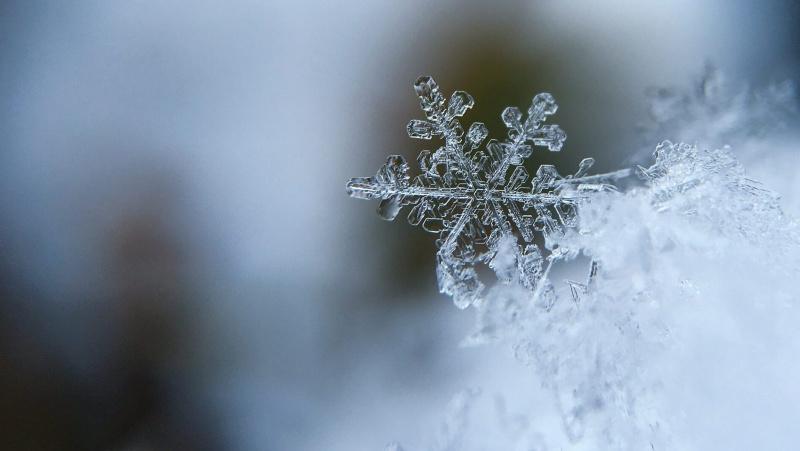 Savaitgalis JK bus šaltokas, temperatūra kris žemiau nulio