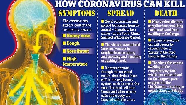 Mokslininkai paaiškino, kaip koronavirusas pažeidžia žmogaus organizmą