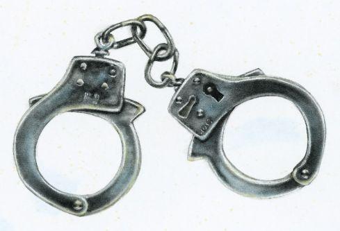 Latvijos kriminalinė policija mano, kad stambias vagystes šalyje padarė atvykėliai iš Lietuvos