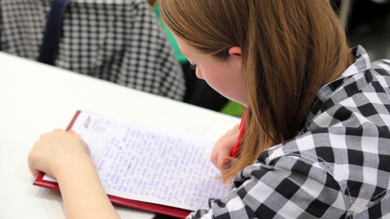Kodėl užsieniečiai mokosi lietuvių kalbos?