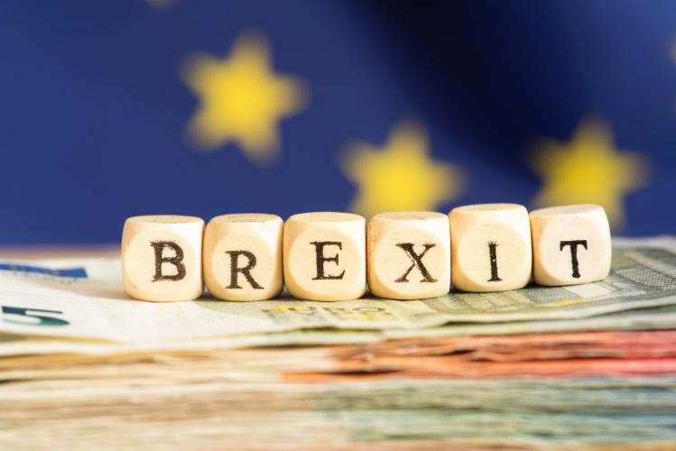 """Dėl teisės likti JK po """"Brexit"""" pereinamojo laikotarpio jau kreipėsi per 3,8 mln. ES piliečių"""