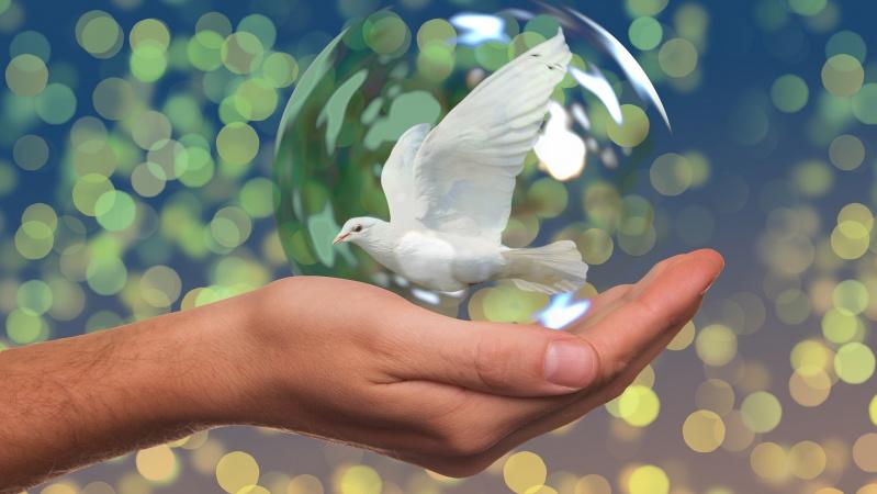 Šių metų Nobelio taikos premiją gavo Pasaulio maisto programa