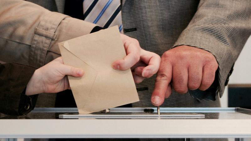 Seimo rinkimai Lietuvoje - Konservatorių pergalė ir Laisvės partijos sėkmė