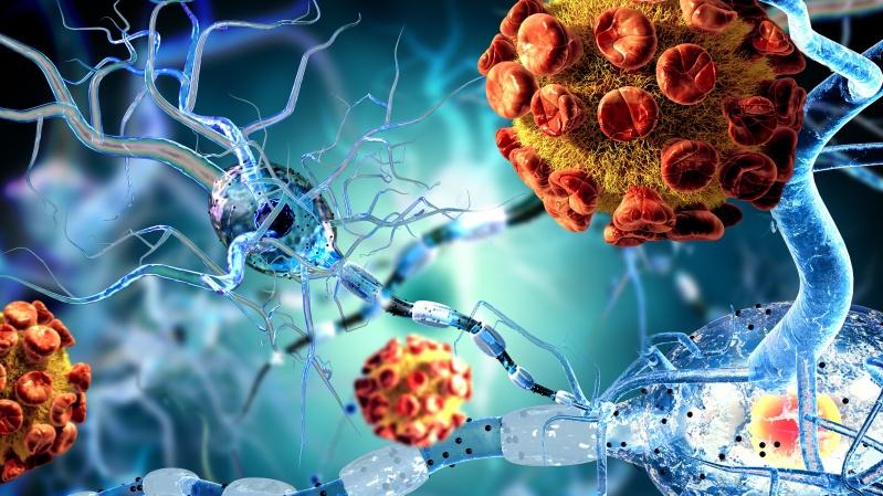 Anglijoje rasti dar keturi braziliškos koronaviruso atmainos atvejai