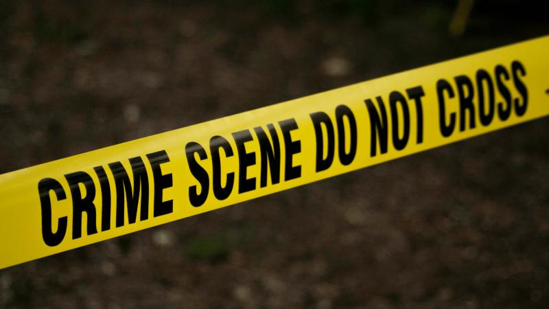 JK ieškoma serijinio žudiko aukos – pradėti kasinėjimo darbai kavinėje