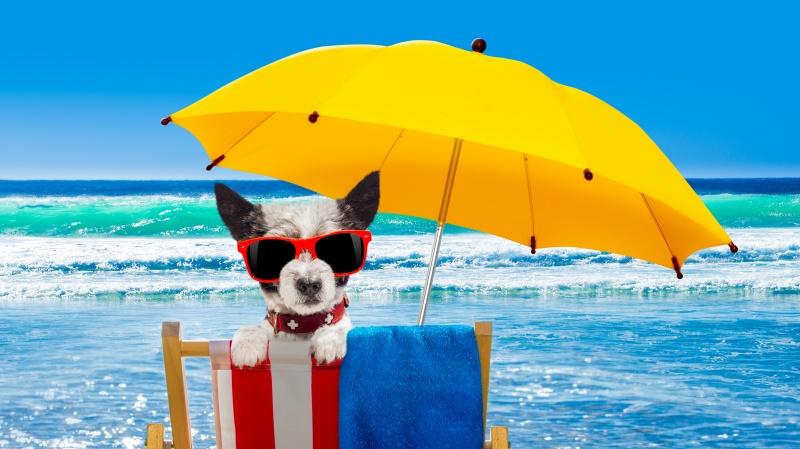 Prognozuojamas puikus savaitgalis, Anglijoje kai kur bus karščiau nei Korfu