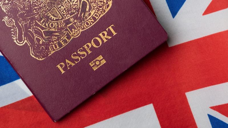 Akademiniam tyrimui reikalingi lietuviai, įgiję JK pilietybę