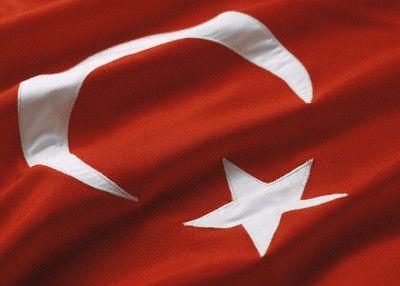Gruzijos krizė didina strateginę Turkijos reikšmę, sako ES plėtros komisaras