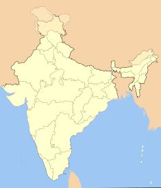 Indijos šventykloje per žmonių spūstį žuvo 144 žmonės