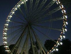Lapkričio 18 Hyde parkas tampa Žiemos stebuklų šalimi