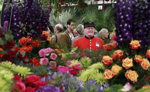 Gėlių paroda prie Karališkosios Chelsea ligoninės