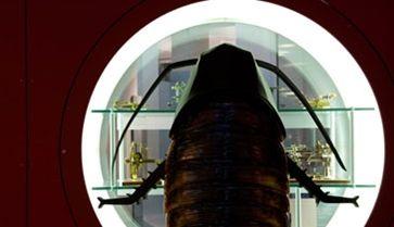 Tarakonų kelionė po mokslo muziejų