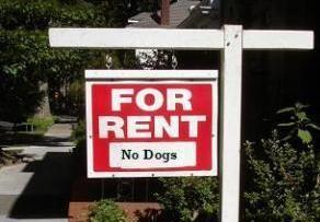 Namai ir šuo Londone: mažiau pasirinkimo ir brangesnė nuoma